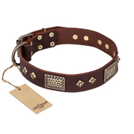 """Loving Owner"" FDT Artisan Decorated Leather Great Dane Collar with Plates and Studs"