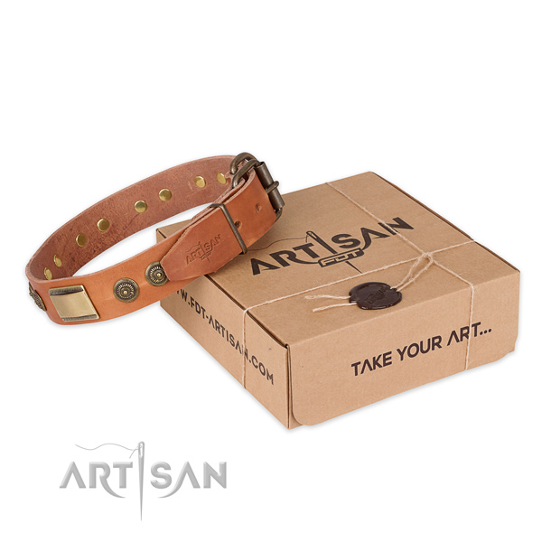 Rust-proof fittings on leather dog collar for everyday use
