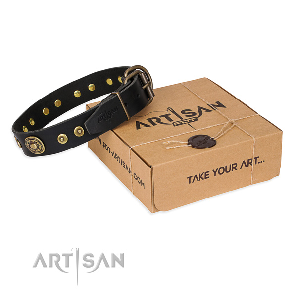 Full grain natural leather dog collar made of soft to touch material with rust-proof traditional buckle