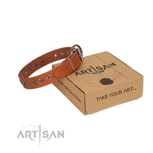 Fancy walking dog collar of best quality natural leather with embellishments