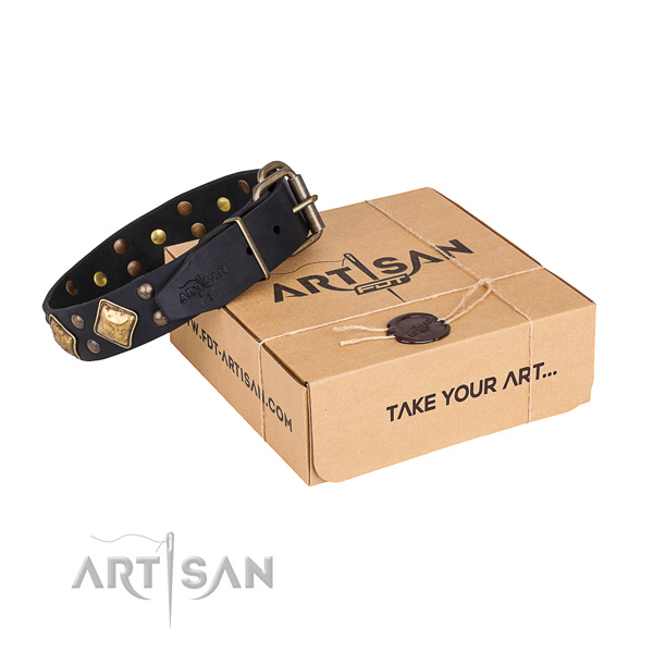 Comfortable wearing dog collar with Stylish design durable decorations