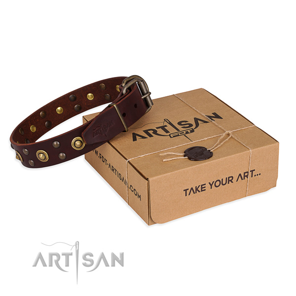 Reliable D-ring on full grain leather collar for your handsome canine