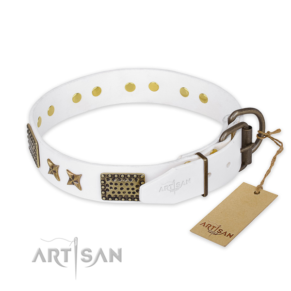Strong traditional buckle on full grain genuine leather collar for your impressive pet
