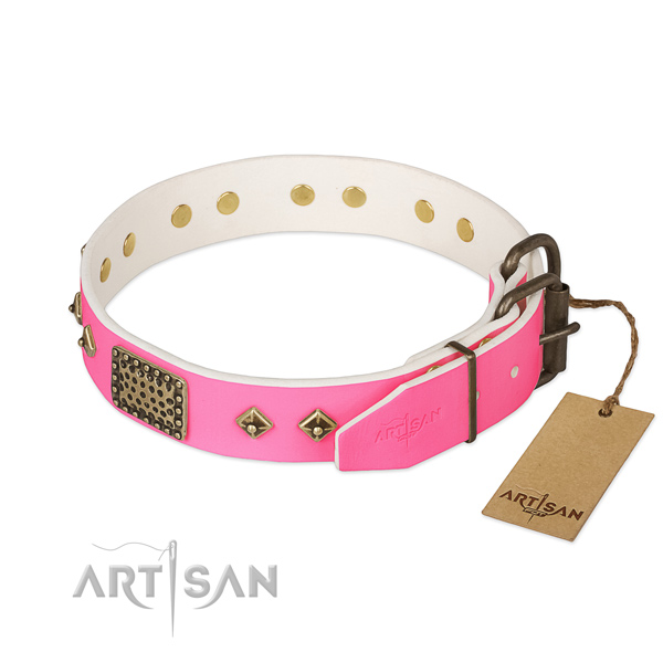 Corrosion resistant adornments on comfy wearing dog collar