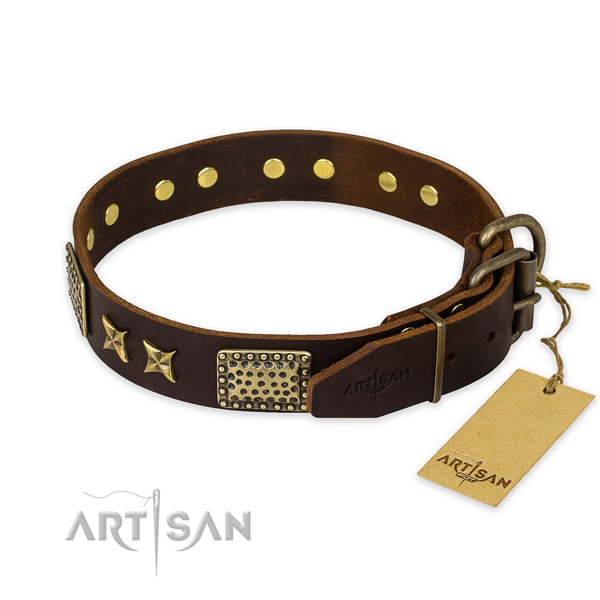 Strong traditional buckle on genuine leather collar for your beautiful doggie