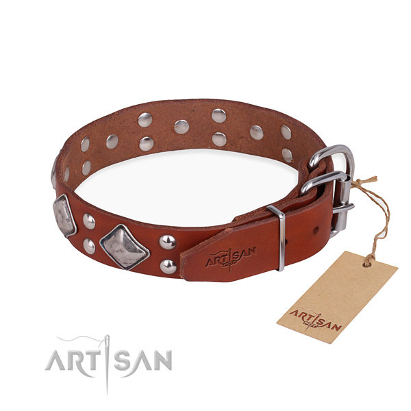 Leather dog collar with inimitable rust resistant adornments