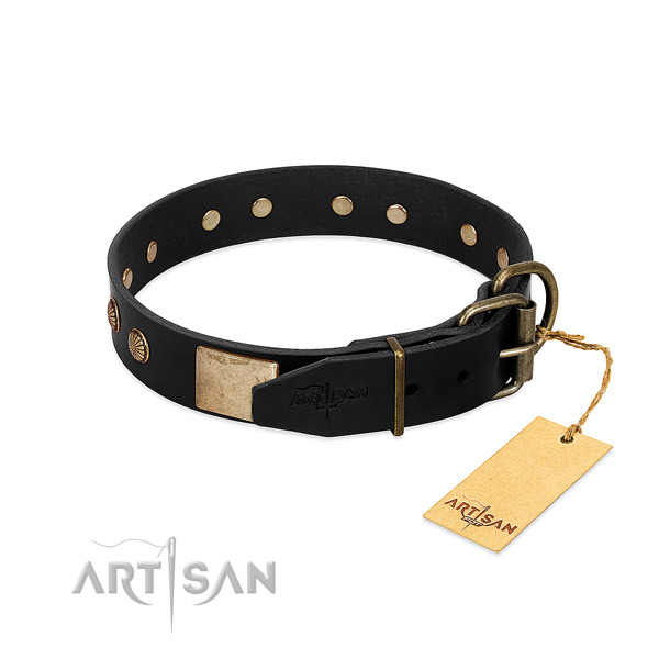 Corrosion proof buckle on comfortable wearing dog collar