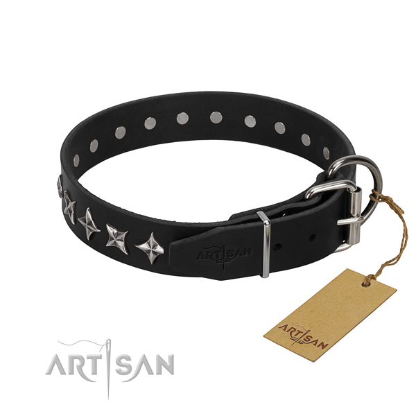 Easy wearing embellished dog collar of top notch leather