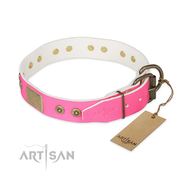 Rust resistant D-ring on daily use dog collar