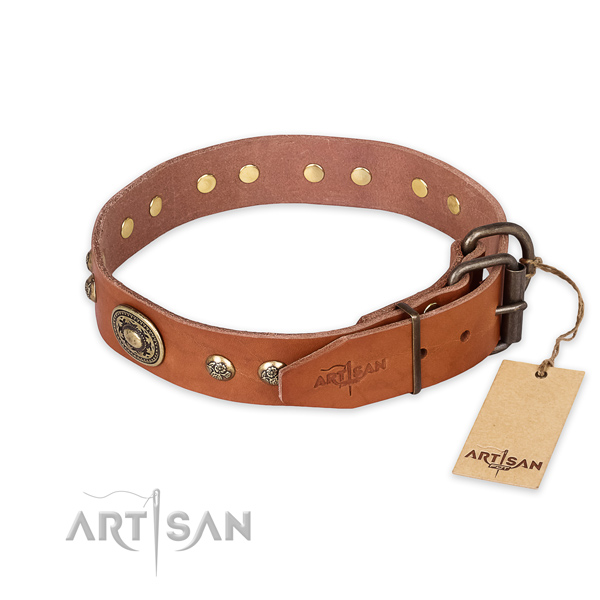 Corrosion proof traditional buckle on full grain genuine leather collar for daily walking your canine
