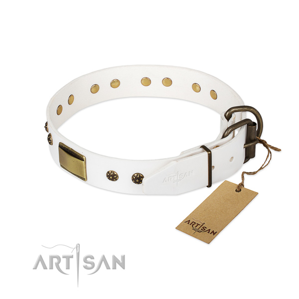 Leather dog collar with rust-proof hardware and studs