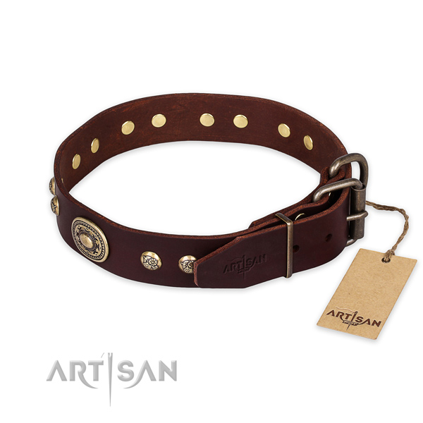 Corrosion resistant buckle on genuine leather collar for fancy walking your dog