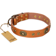 """Dandy Pet"" FDT Artisan Handcrafted Tan Leather Great Dane Collar"
