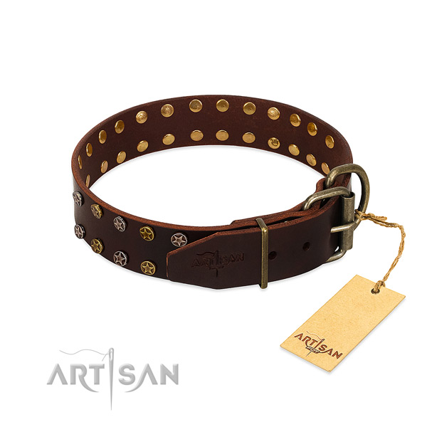Daily use leather dog collar with exceptional embellishments
