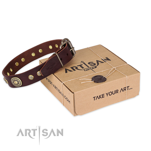 Strong fittings on natural leather dog collar for everyday walking