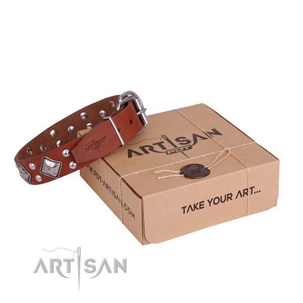 Daily use dog collar with Inimitable rust-proof adornments