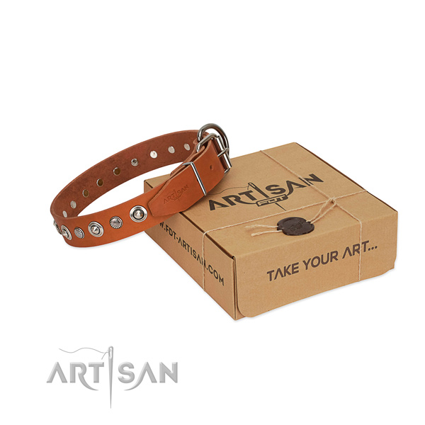 High quality natural leather dog collar with remarkable adornments