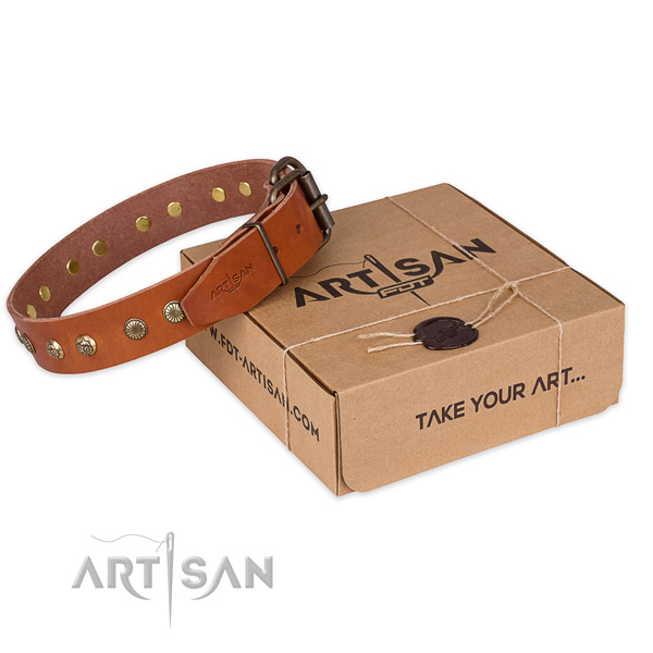 Strong traditional buckle on leather collar for your beautiful doggie
