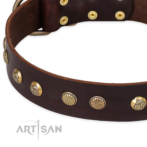 Full grain genuine leather collar with durable fittings for your handsome dog