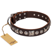 """Pierian spring"" FDT Artisan Brown Leather Great Dane Collar with Silvery Decorations"