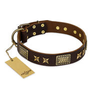 """Sparkling Bronze"" FDT Artisan Genuine Leather Great Dane Collar with Bronze Look Stars and Plates"