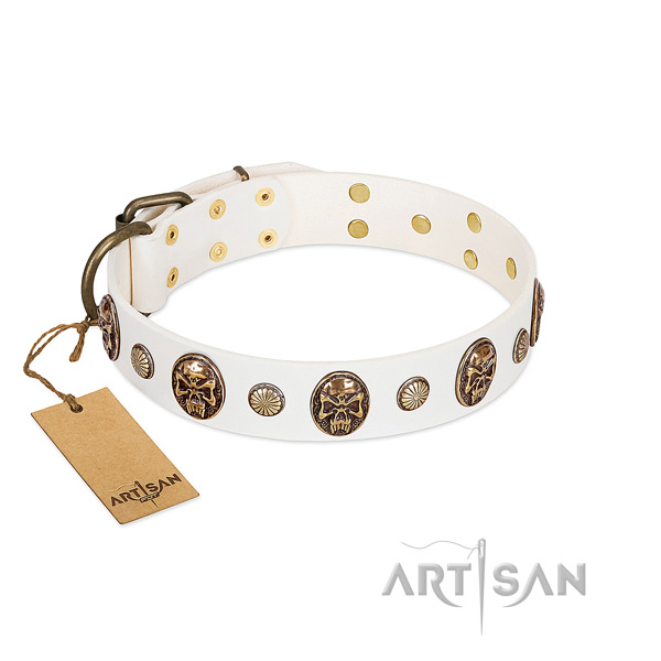 Embellished natural genuine leather dog collar for daily walking