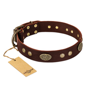 """Old-fashioned Glamor"" FDT Artisan Brown Leather Great Dane Collar with Old Bronze Look Plates and Circles"