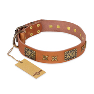 """Cosmic Traveller"" FDT Artisan Adorned Leather Great Dane Collar with Old Bronze-Plated Stars and Plates"