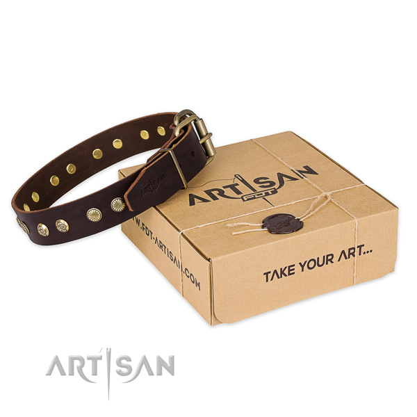 Corrosion proof hardware on leather collar for your beautiful four-legged friend