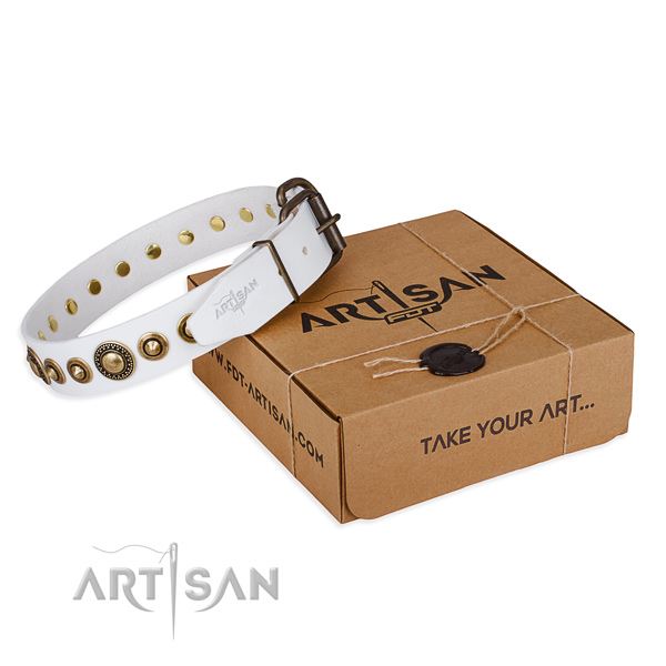 Reliable natural genuine leather dog collar made for daily use