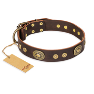 """One-of-a-Kind"" FDT Artisan Handmade Decorated Brown Leather Great Dane Collar"