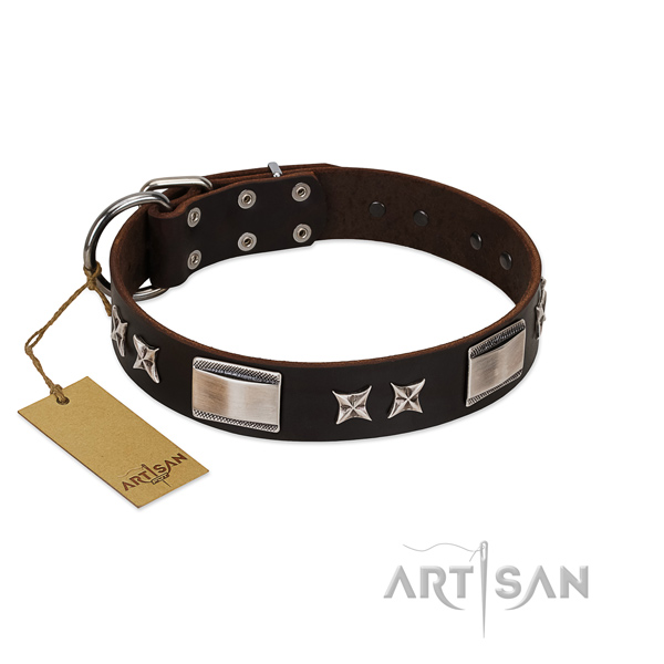 Top notch dog collar of full grain natural leather