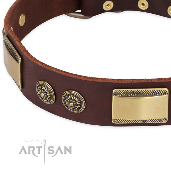Corrosion proof buckle on natural genuine leather dog collar for your dog