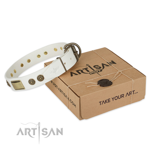 Rust-proof fittings on leather dog collar for comfortable wearing