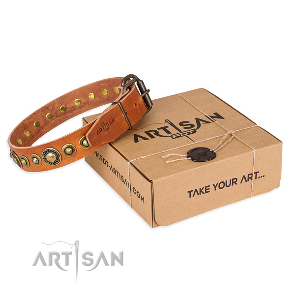 Flexible leather dog collar made for fancy walking