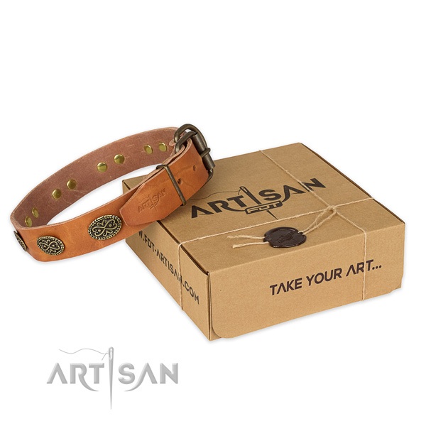 Rust resistant traditional buckle on full grain natural leather collar for your impressive canine
