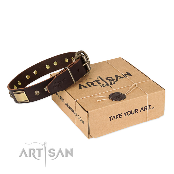 Studded leather collar for your lovely doggie