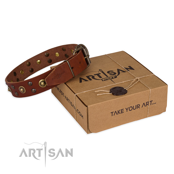 Rust resistant traditional buckle on genuine leather collar for your stylish doggie