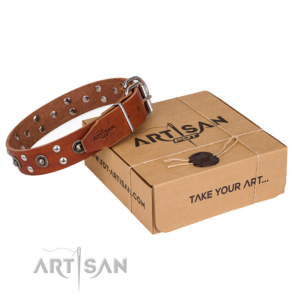 Strong fittings on full grain genuine leather collar for your attractive dog