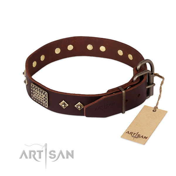 Leather dog collar with reliable hardware and studs