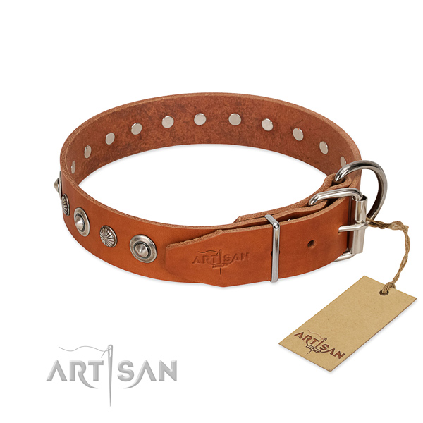Top quality full grain leather dog collar with impressive adornments