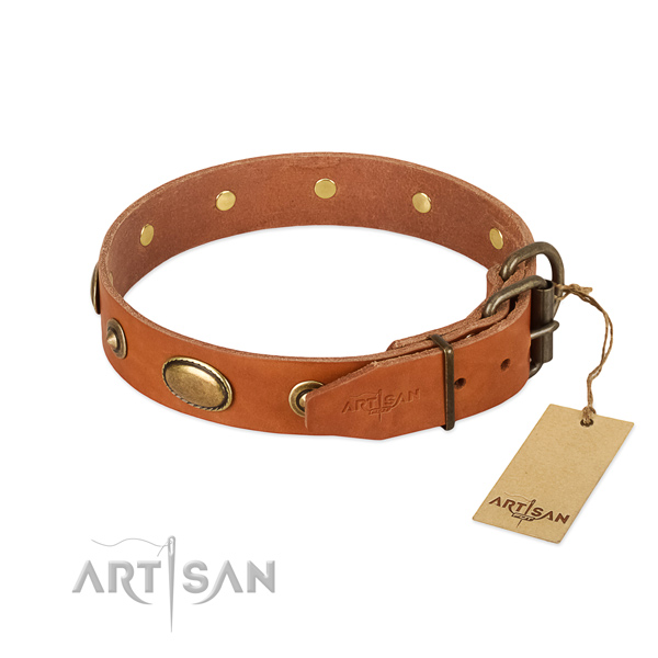 Reliable adornments on natural leather dog collar for your doggie