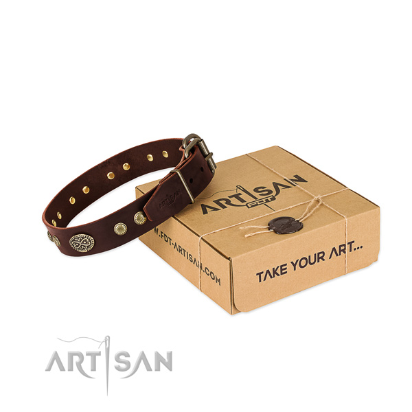 Corrosion proof adornments on full grain leather dog collar for your canine
