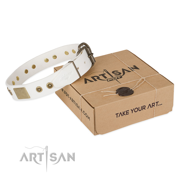 Fine quality genuine leather collar for your beautiful four-legged friend