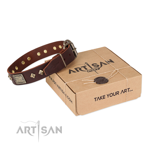 Handcrafted full grain leather collar for your stylish four-legged friend