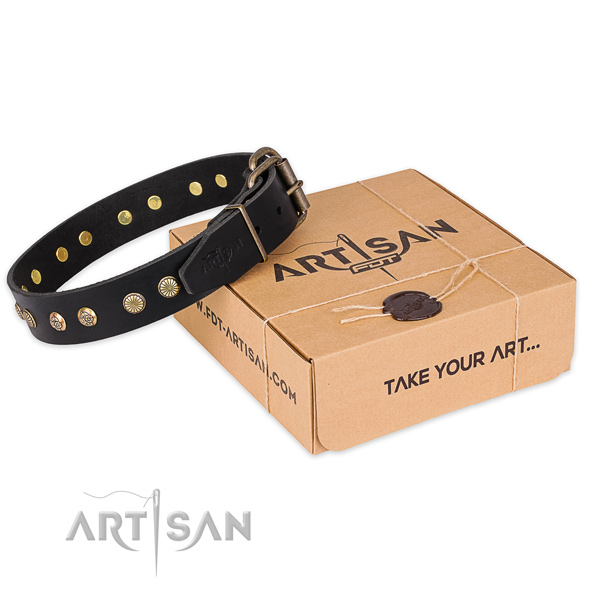 Rust resistant traditional buckle on genuine leather collar for your handsome four-legged friend