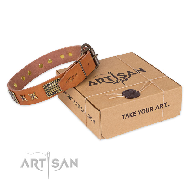 Durable D-ring on genuine leather collar for your impressive four-legged friend