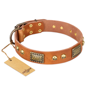 """Saucy Nature"" FDT Artisan Tan Leather Great Dane Collar with Old Bronze Look Plates and Skulls"