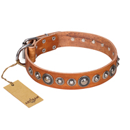 """Daily Chic"" FDT Artisan Tan Leather Great Dane Collar with Decorations"