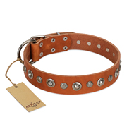 """Gorgeous Roundie"" FDT Artisan Tan Leather Great Dane Collar with Chrome-plated Circles"